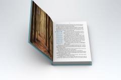 Páginas interiores del libro Nico y Lena